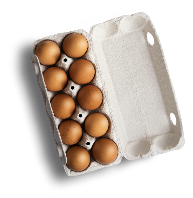Tray with Chicken Eggs